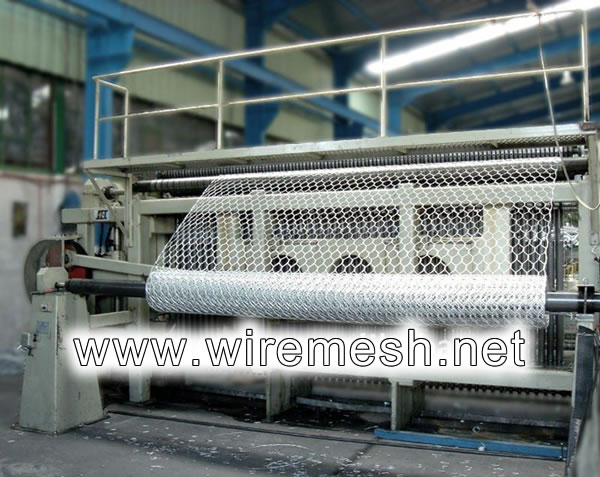 Hexagonal Mesh used for Poultry Wire, Machine Weaving Processing